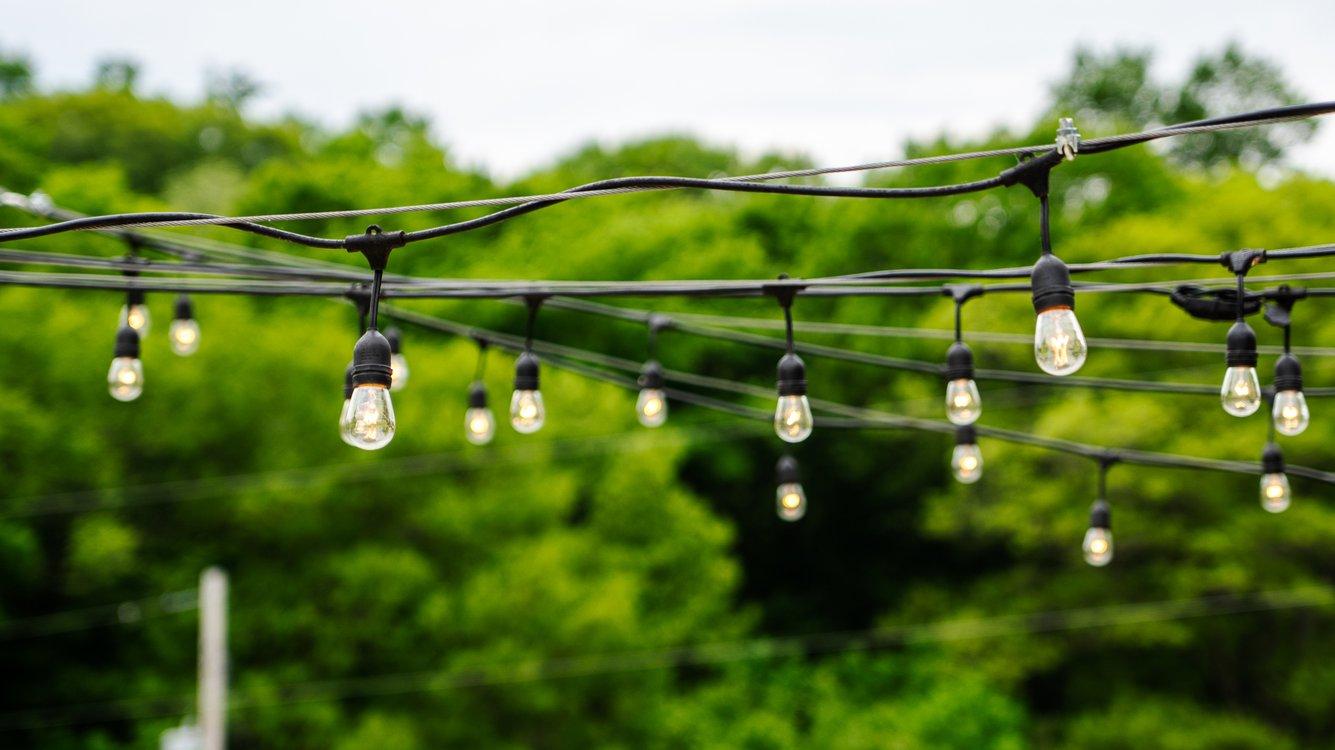 String lights hanging over a treeline.